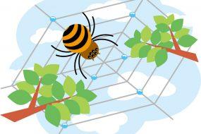 年3回実施|マンションの意外と重要『秋』の害虫対策