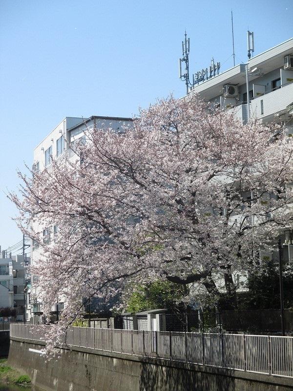 寮・社宅の新人管理人さん研修レポート